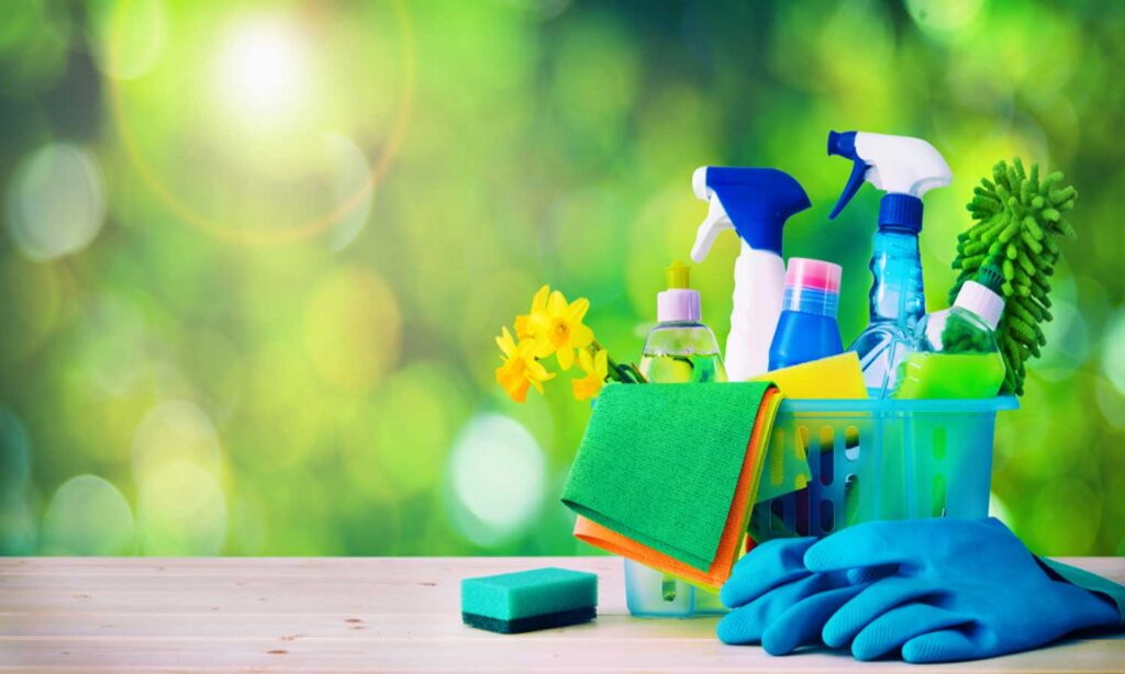 experienced house cleaners